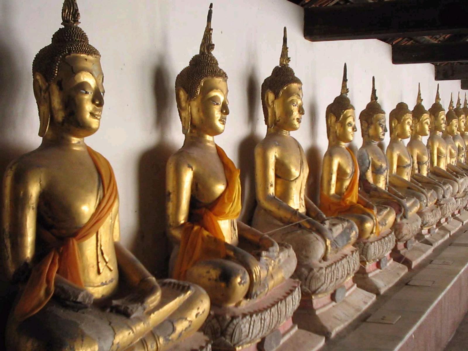 BuddhasWS