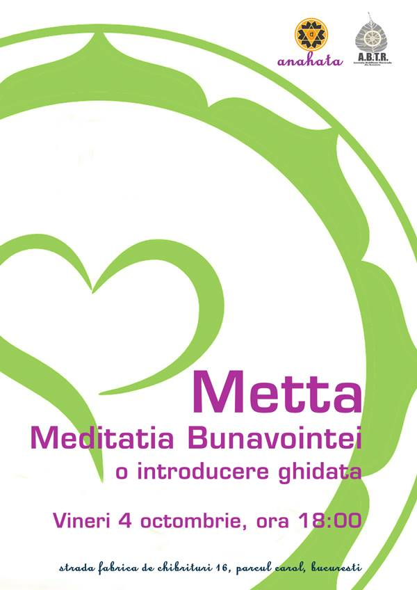 metta_flyer_2013