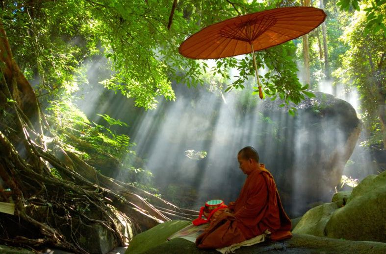 Monk Meditating4 In Forest